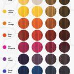 paleta londa color switch
